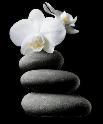 Ombrelles galets pour d cor zen for Image galet zen