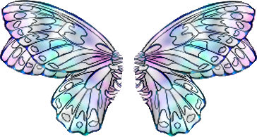 Aile De Papillon Dessin ailes papillon